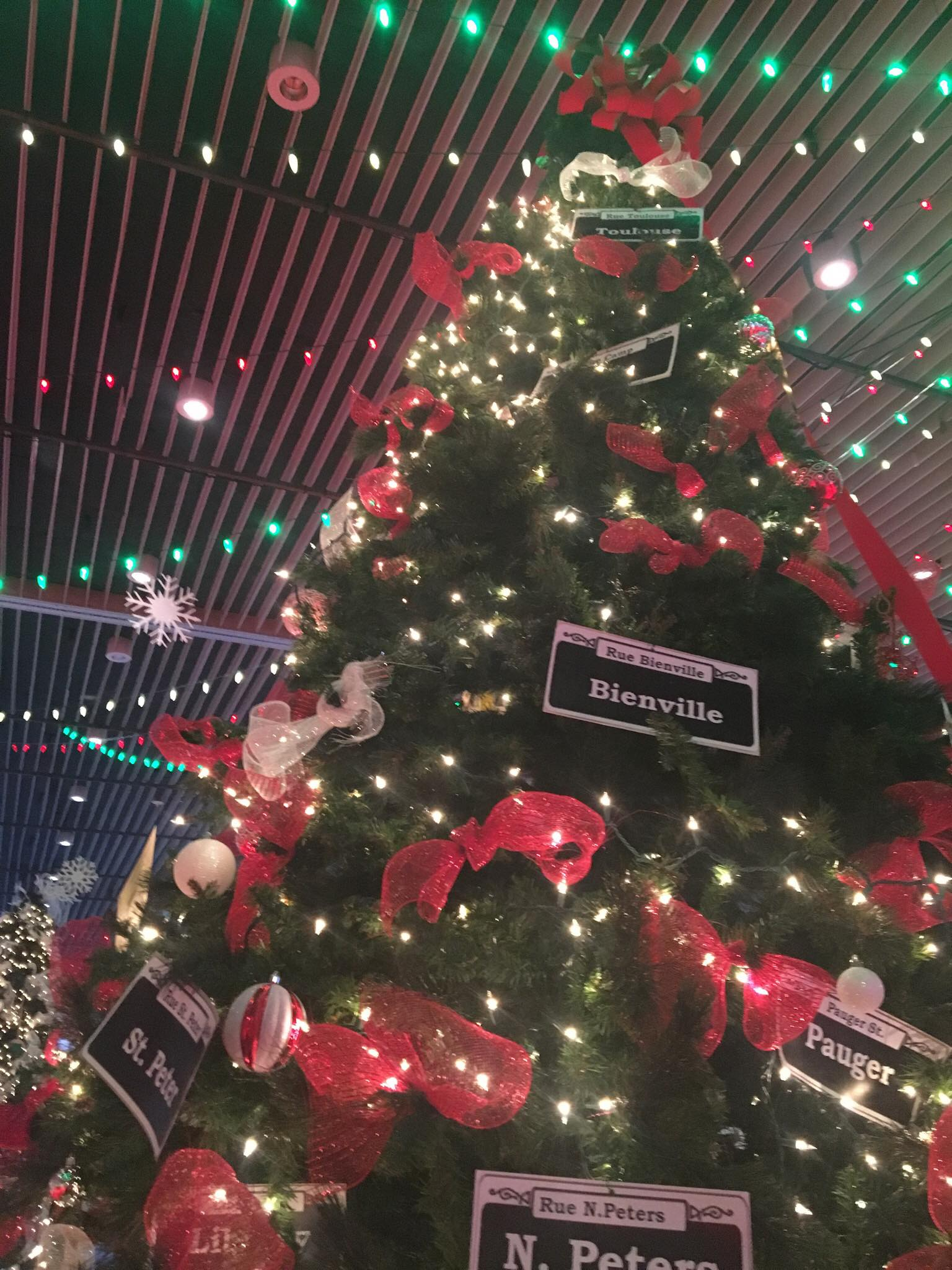 What You Need to Know About NOLA ChristmasFest {Worth the Drive ...