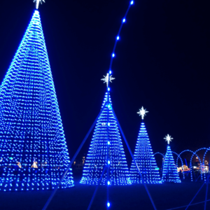 Gulfport Harbor Lights Winter Festival {Worth the Drive}