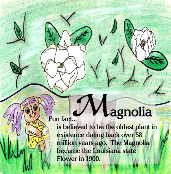 Magnolia page copy