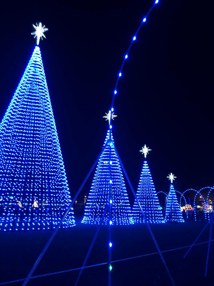 gulfport-christmas-lights-2
