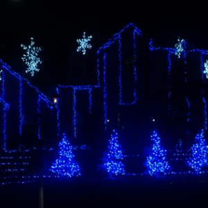 Christmas Lights on the Northshore