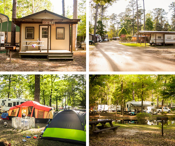 Camping Options