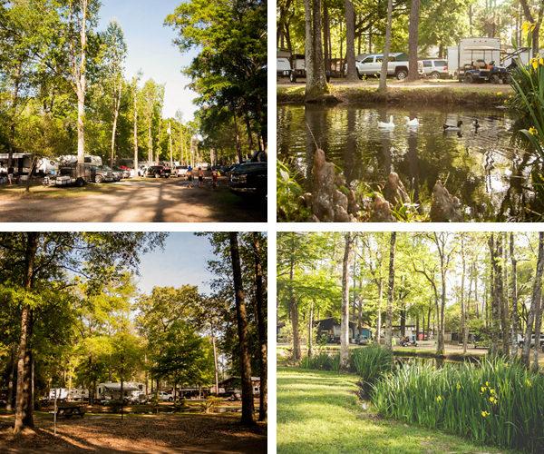 Park Beauty