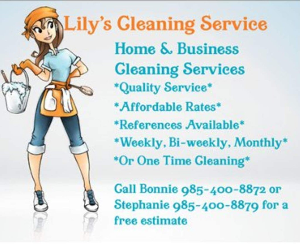 lilys cleaning service