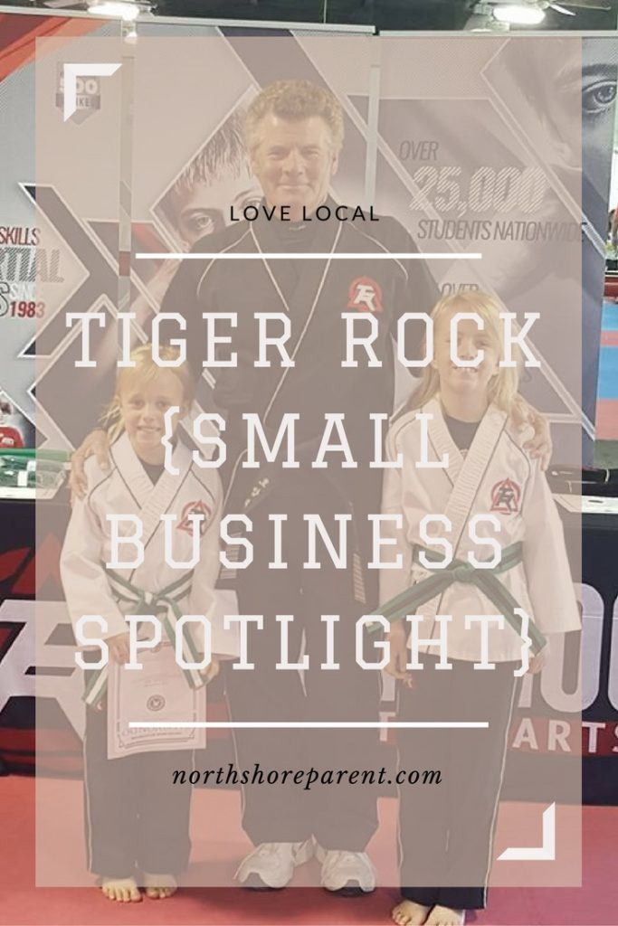 Art Monroe's Tiger Rock Academy {Small Business Spotlight}