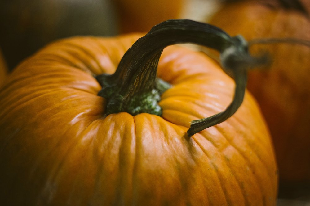 31 Things to Do in October
