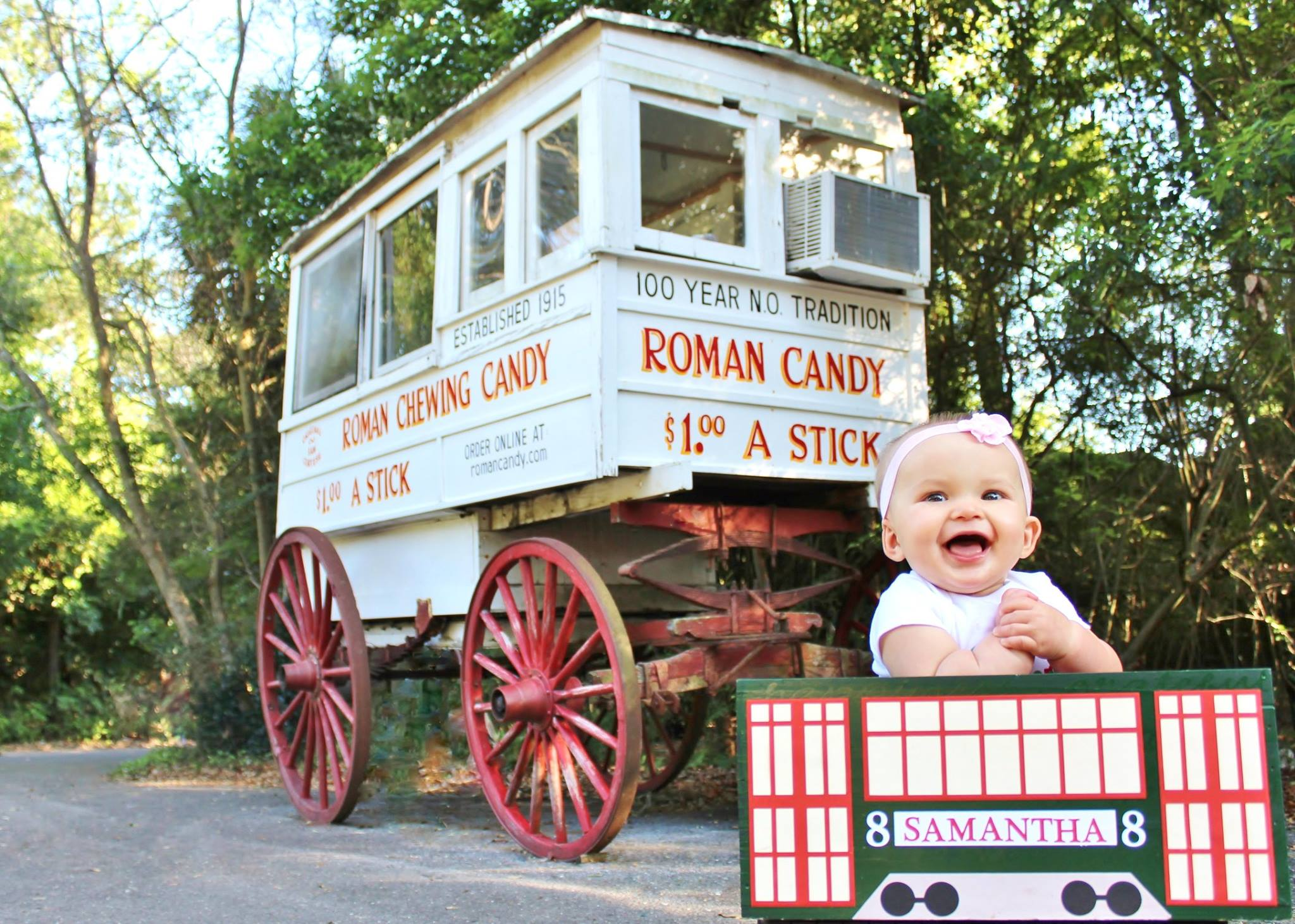 New Orleans-Inspired Monthly Baby Pictures