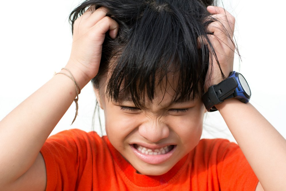 How to Deal With Lice When it Shows Up at Your House