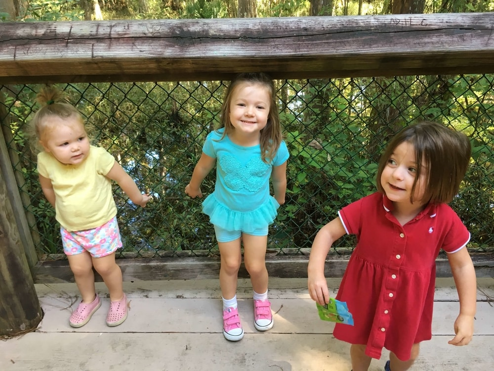 Northlake Nature Center {An Honest Review}