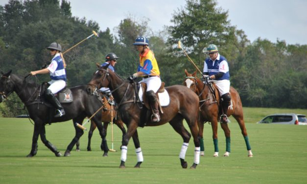{Know Before You Go} Harvest Cup Polo Classic