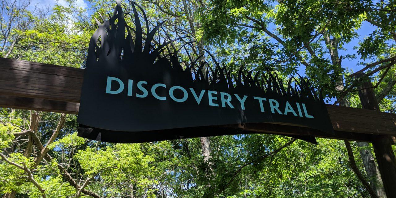 Audubon Louisiana Nature Center {Know Before You Go}